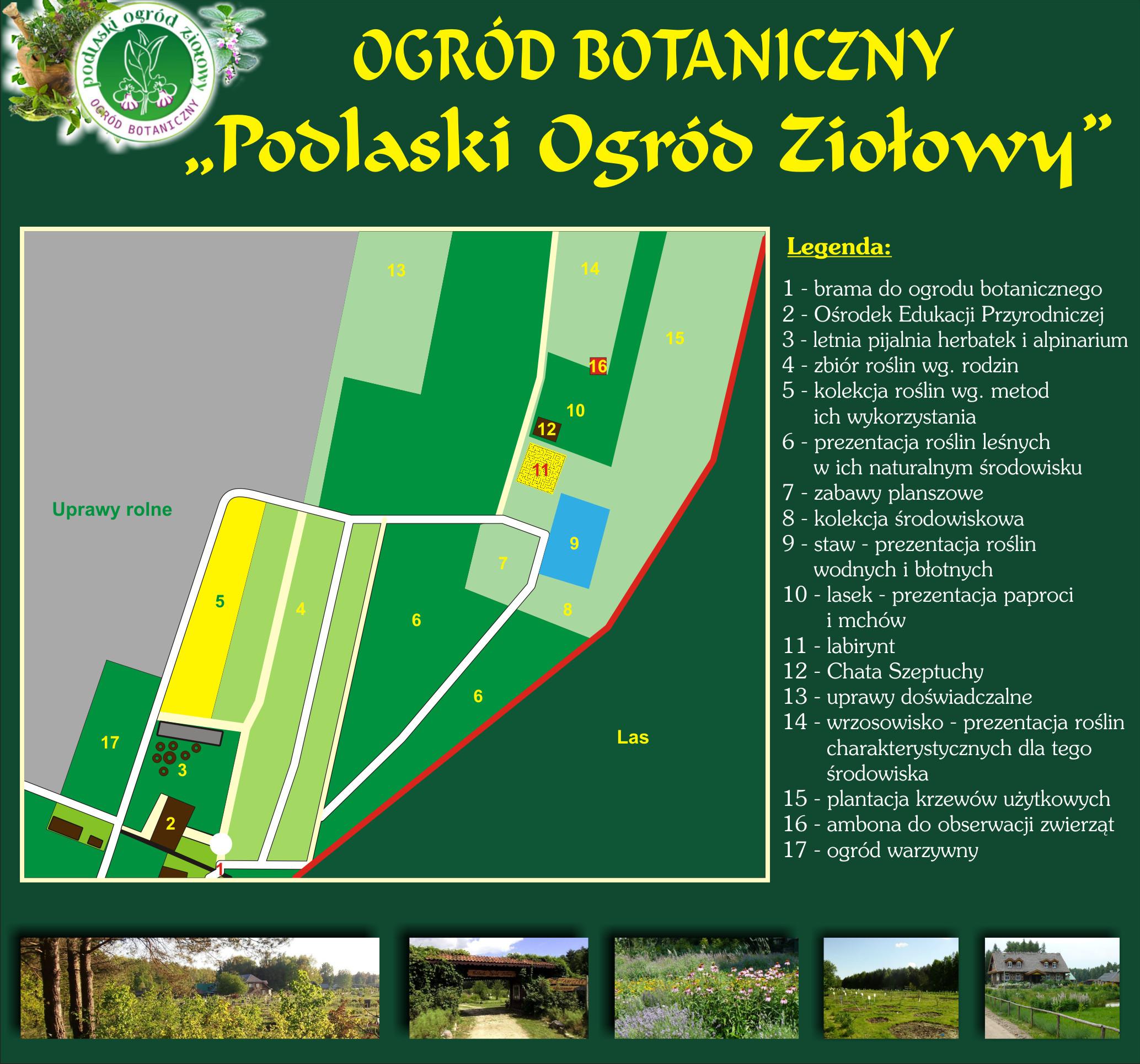 ogr__d_botaniczny__1_